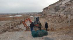 Gülşehir Belediyesi hayvan barınağı çalışmaları