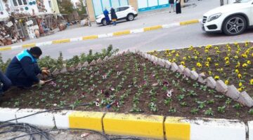 Avanos Belediyesi mevsimlik çiçek dikimine devam ediyor