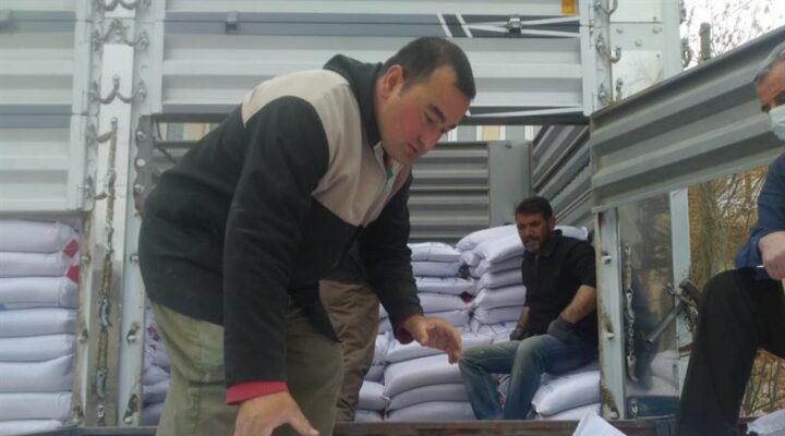 Kozaklı'da 105 ton kırmızı mercimek tohumluğu dağıtıldı