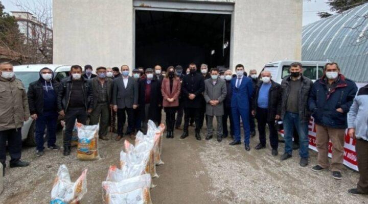 Hacıbektaş'a 2 bin dekarlık alanda yeşil mercimek üretilecek