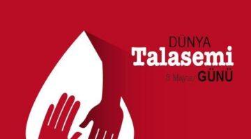 En önemli halk sağlığı sorunlarından biri de Talasemi